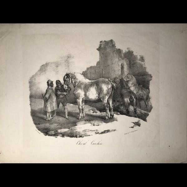 GERICAULT THEODORE (1791–1824) - CHEVAL CAUCHOIS