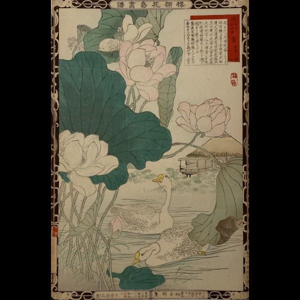 BAIREI KONO NAOTOYO (1844 - 1895) - OIES