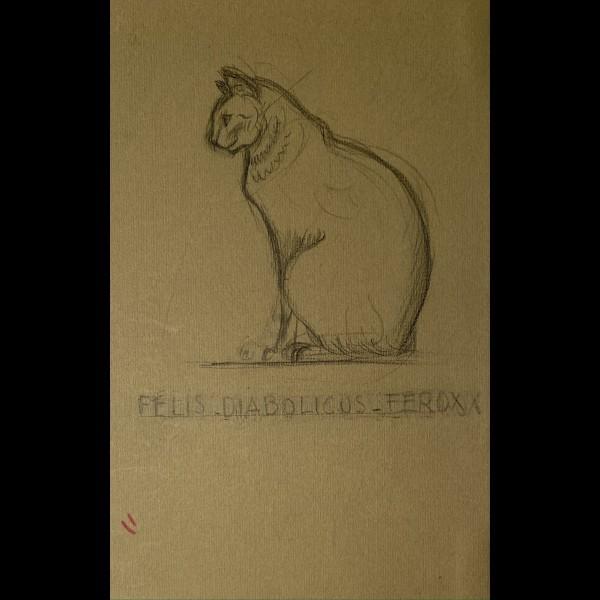 POILLERAT GILBERT  (1902-1988) - FELIS DIABOLICUS FEROX