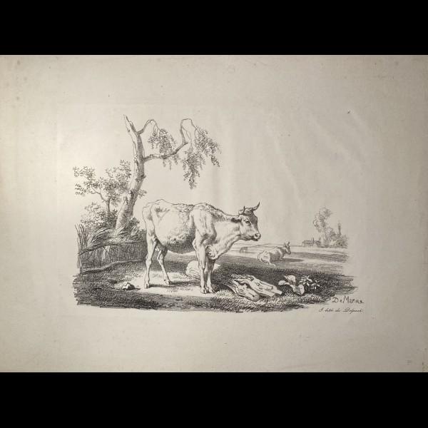 DEMARNE JEAN-LOUIS (1752/54-1829) -  LES VACHES