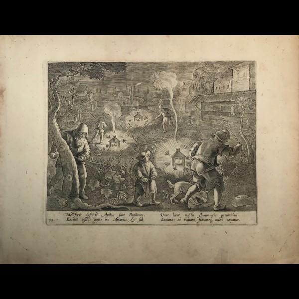 GALLE CORNELIS (1576-1650)  - MELLIFERIS INFESTI APIBUS
