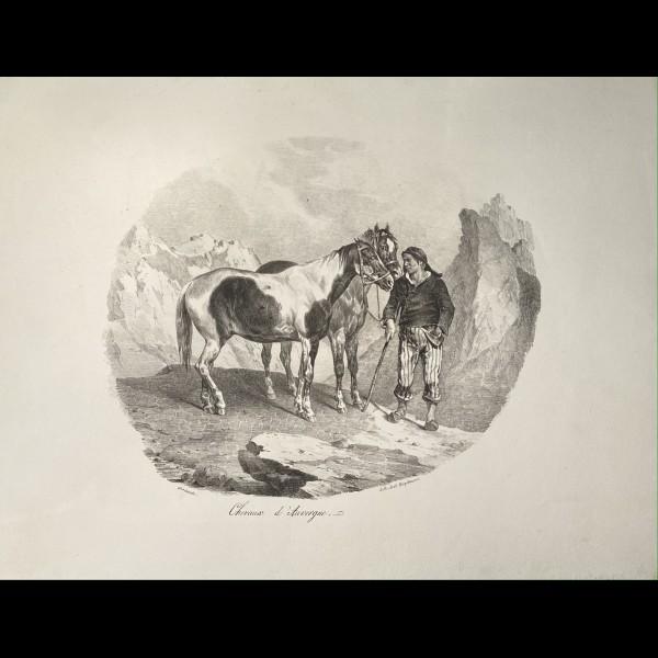 GERICAULT THEODORE (1791–1824) - CHEVAUX D'AUVERGNE