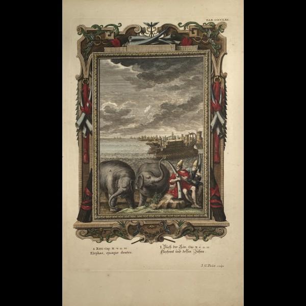FÜSSLI JOHANN MELCHIOR (1677-1736) - ELEPHAS EJUSQUE DENTES